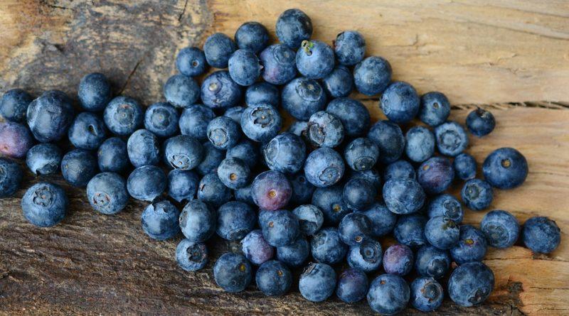 Borůvky léčí i dodají vitaminy. Co dalšího umí?